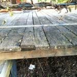 dreveny-masiv-bez-udrzby-10